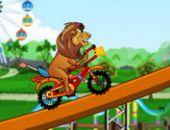 Lion Trajet